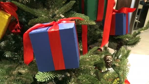 Barevné vánoční hračky ve formě vánočních dárků, zdobené barevnými stuhami, zavěšené na větvích vánočního stromku. Detailní záběr.