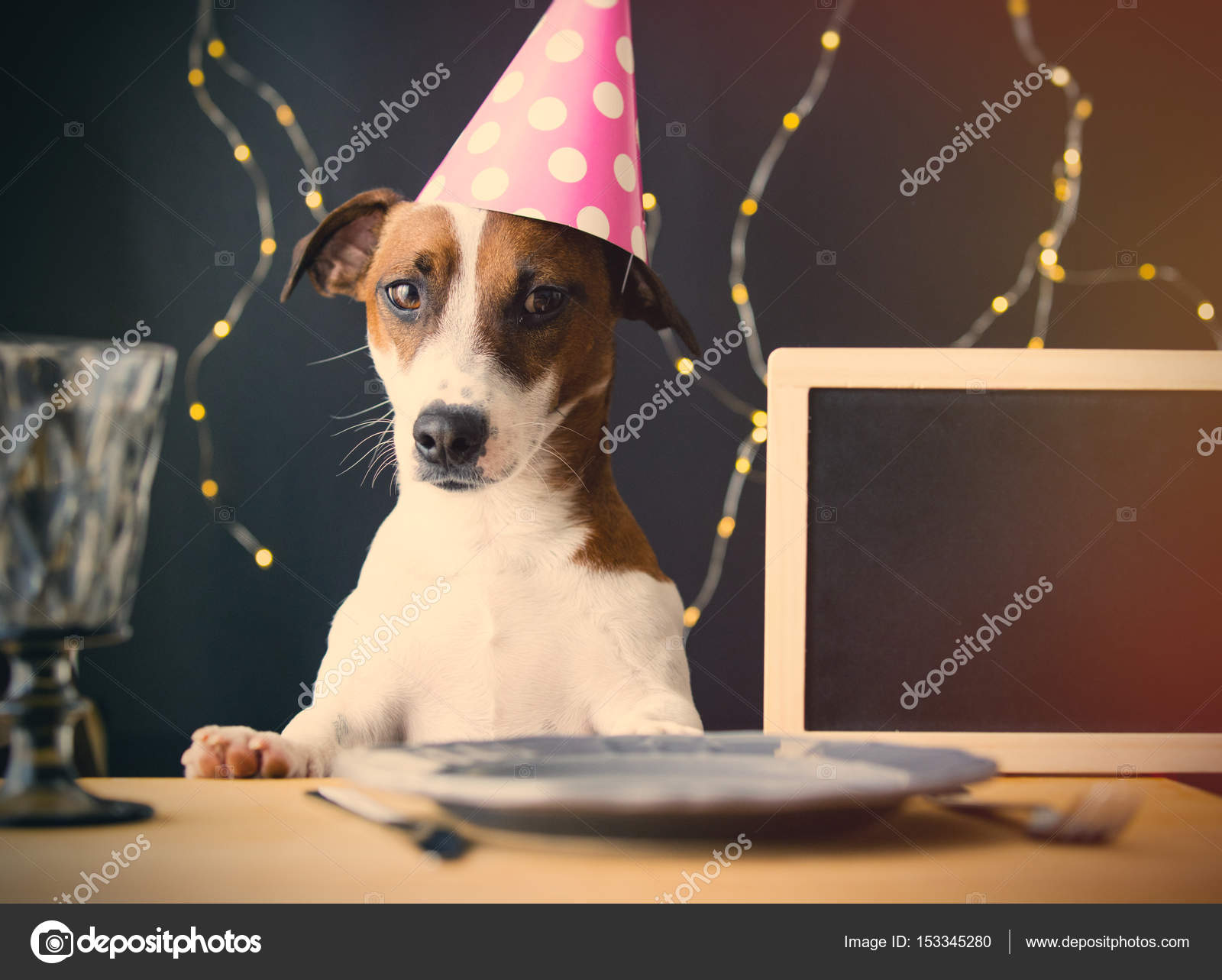 Cute Little Dog Wearing Pink Birthday Hat At The Table Against Electric Garlands Background Photo By