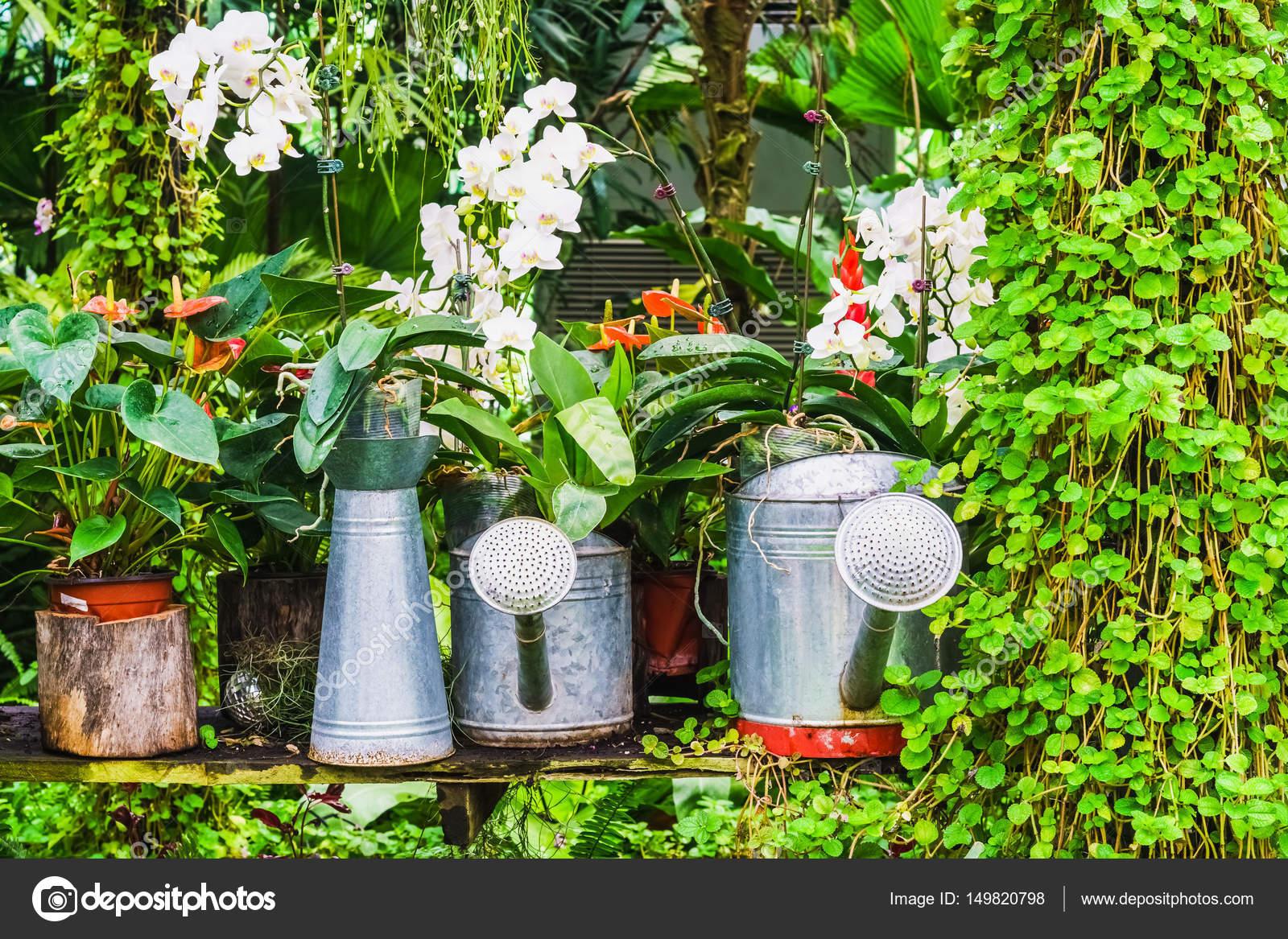 Tuin decoratie idee met behulp van het water kan in tropische tuin
