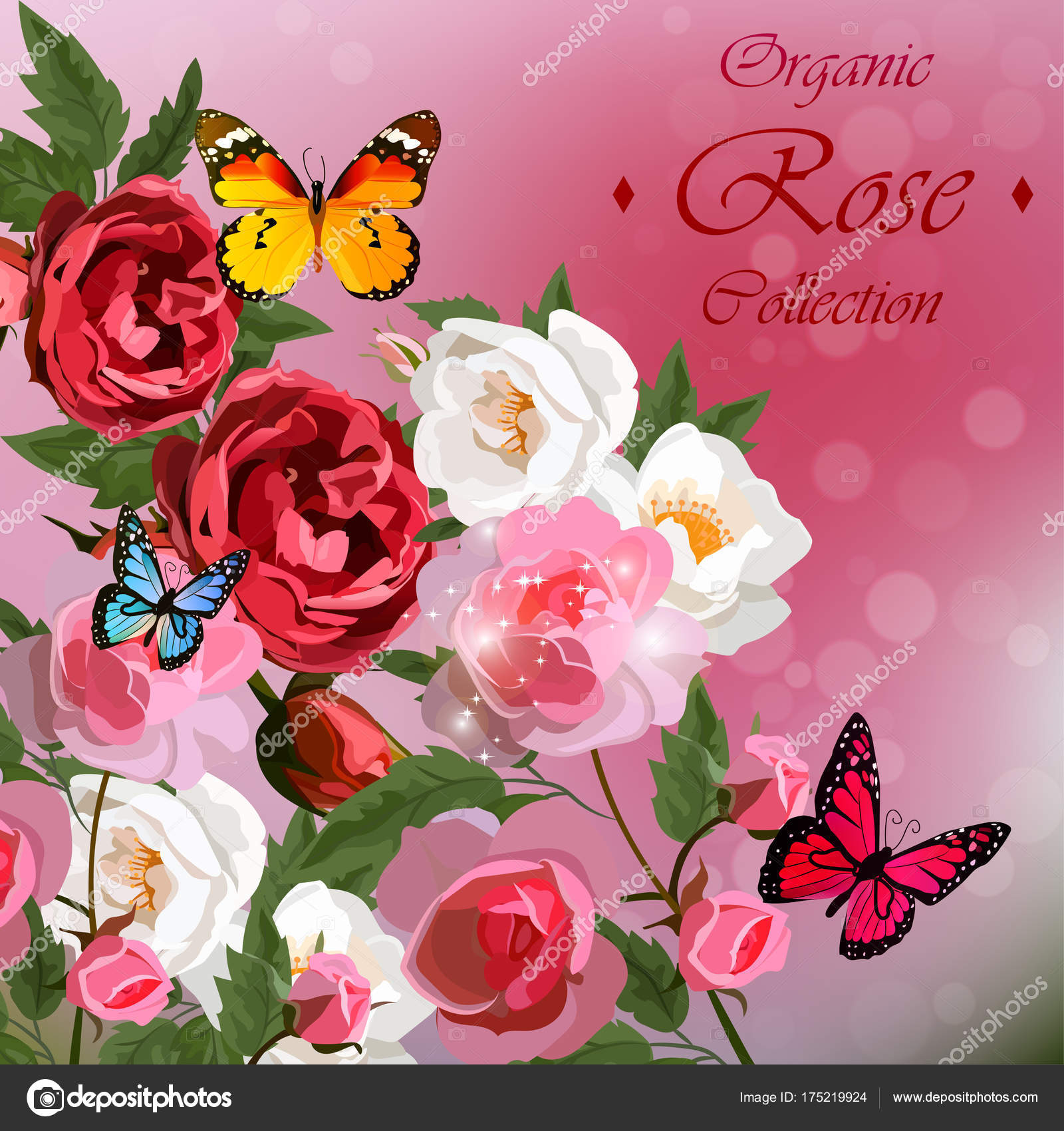 roses and butterflies — Stock Vector © StellaL #175219924