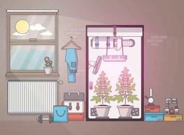 Flat Design of medical cannabis growing indoor