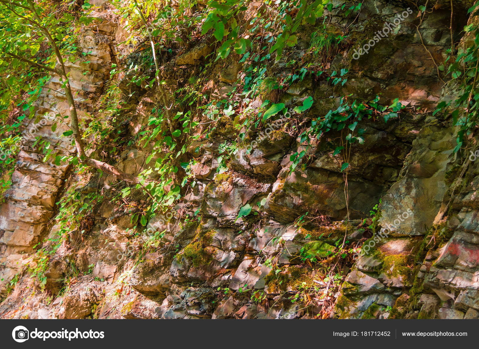 Wall Of Mountain With Vegetation In Sunny Autumn Day Stock