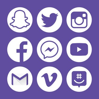 Social media logotype flat icon