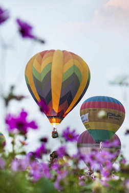 hot air balloons with flowers