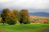 cloudy rainy sky, fall season trees, flora in autumn