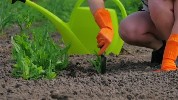 mladá dívka s velkou zelenou konev pracují v zahradě v letní době