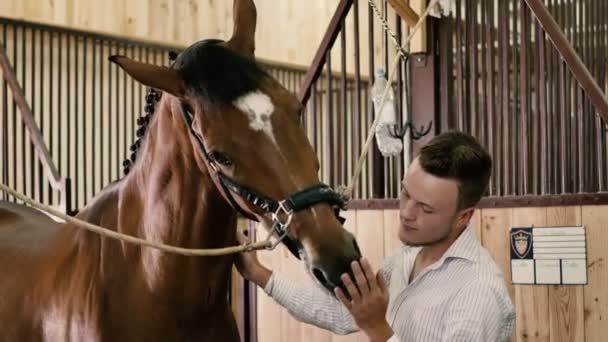 Mann streichelt und streichelt Pferd
