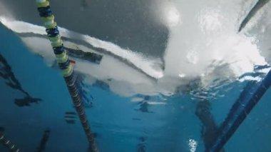 Sporty woman swimming in pool.