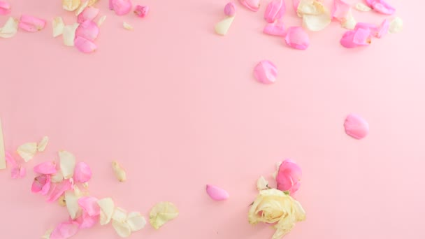 pink background with rose petals