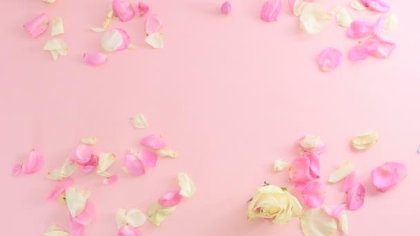 rózsaszín háttér, a rózsaszirom