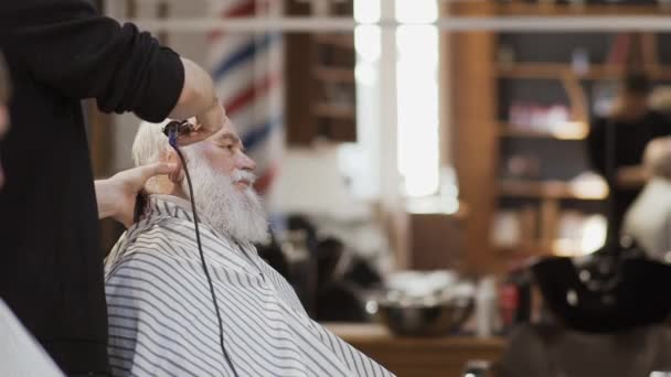 Styliste professionnelle fait coiffure moderne au vieil homme dans le salon  de coiffure