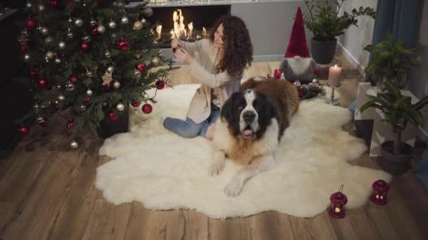 Középső lövés bájos barna nő díszítő karácsonyfa és simogató kutyája. Aranyos kaukázusi lány göndör hajjal, játékokkal a fenyőfán szilveszterkor. A hölgy otthon tölti az ünnepeket.
