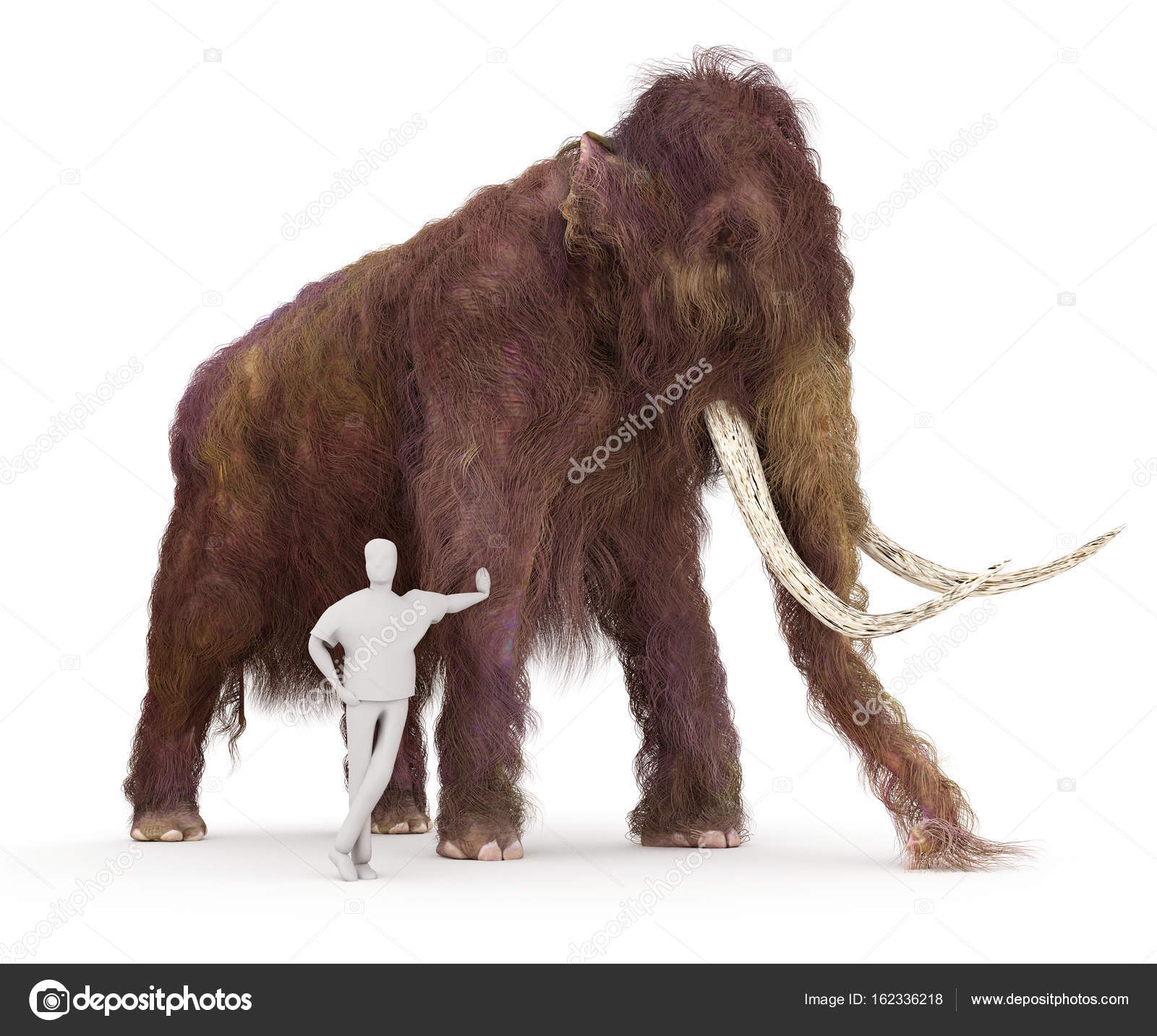 Woolly Mammoth And Human Size - 258.4KB