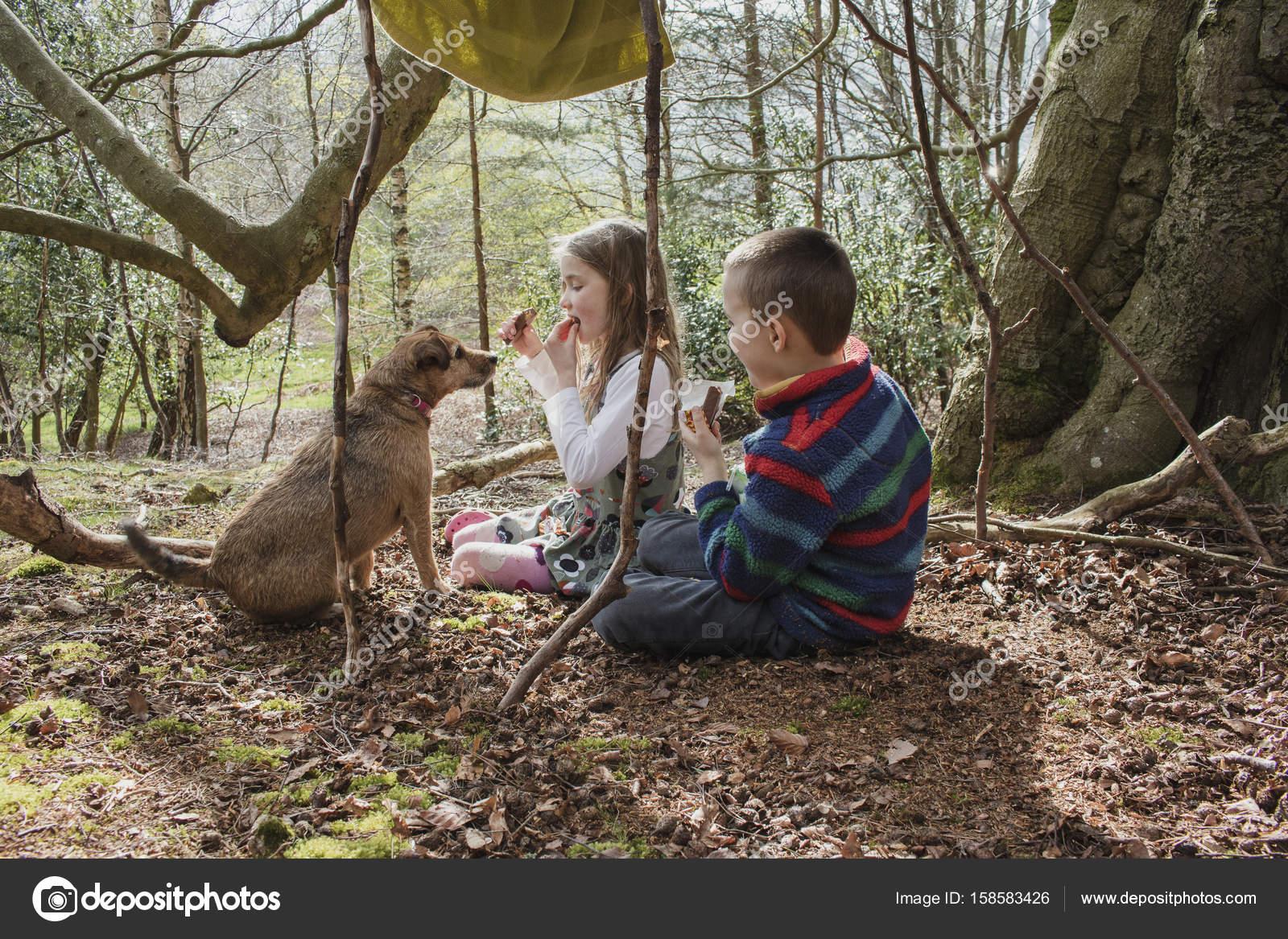 Kinder Picknick Tafel : Wald picknick mit gierigen hund u stockfoto dglimages