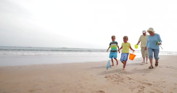 Slow motion shot of two brothers and their grandparents searching for shells on the beach.