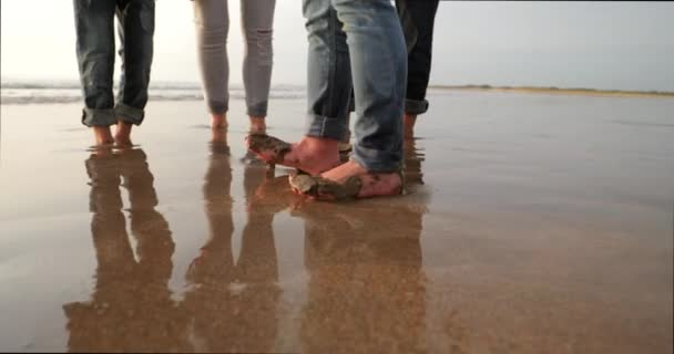 Close-up, slow motion, of a little boys feet in the wet sand, walking about while his family get their feet out of the sand too.