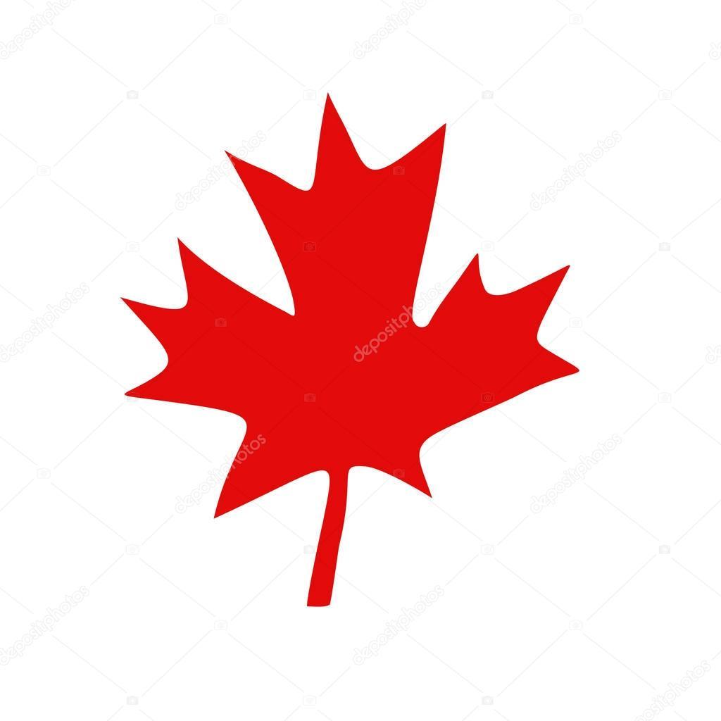 Foglia di acero canadese rosso vettoriali stock for Acero rosso canadese prezzo