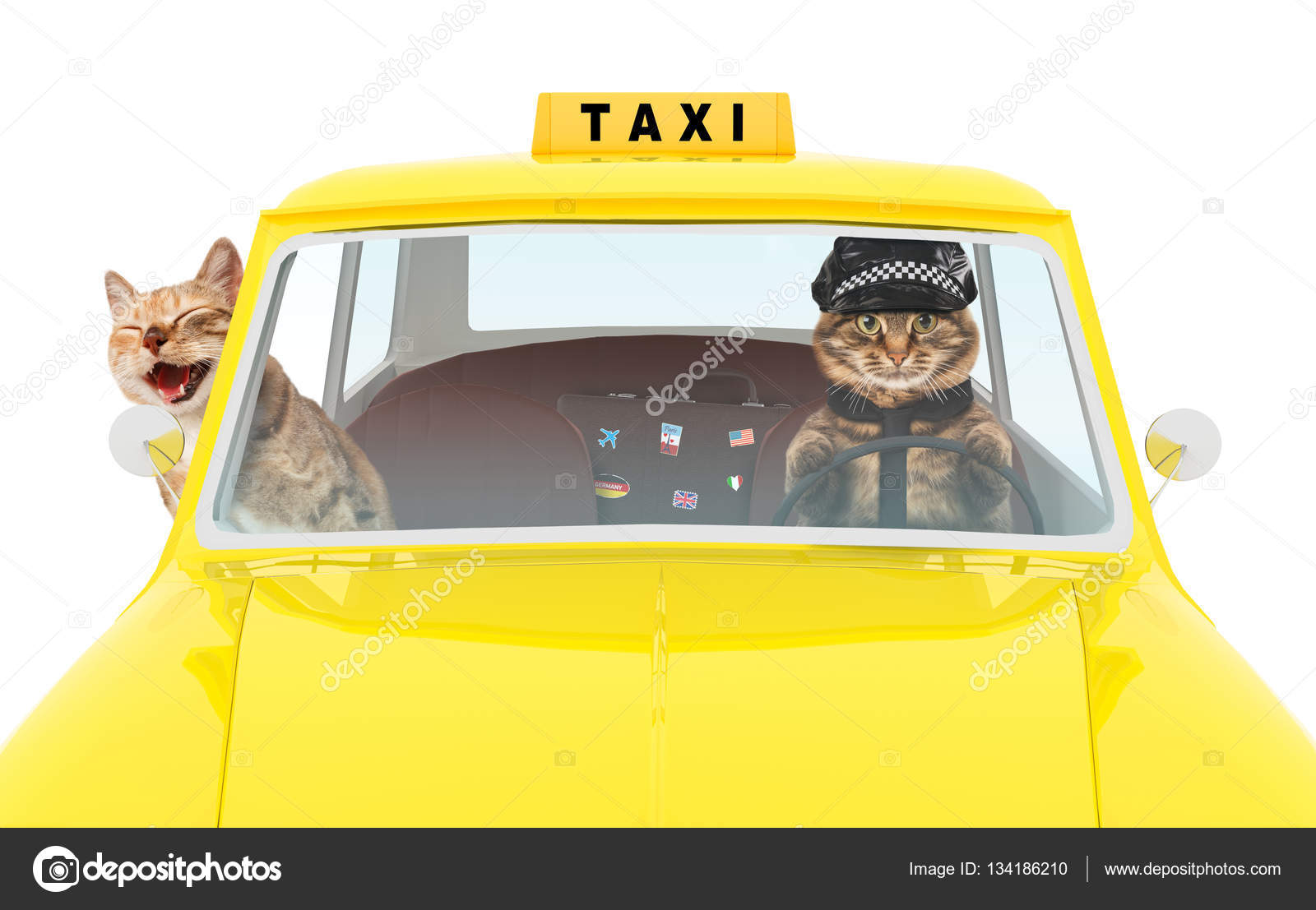 Stock Illustration Taxi Driver In The Car together with beachyellowcab in addition Taxi Driver in addition Minibus taxi clipart moreover Fotos De Archivo Taxista Image14436793. on cartoon taxi driver