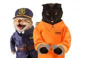 Fotografie Schwarze Katze in Handschellen mit Katze Polizist in der Nähe
