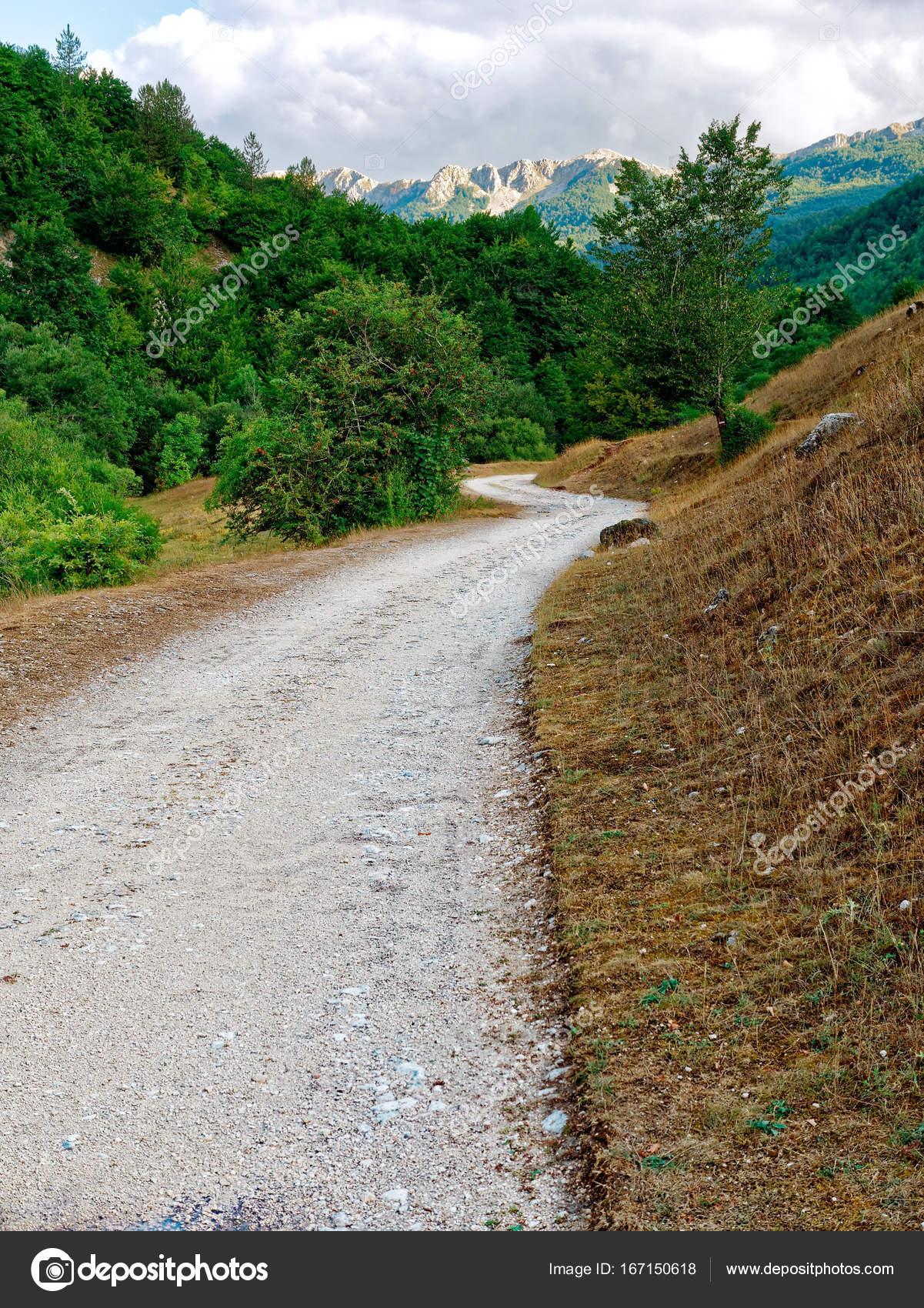 kiesweg in der natur — stockfoto © canbedone #167150618