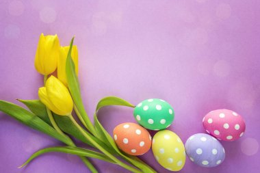 Easter eggs and yellow tulips on purple background. Space for te