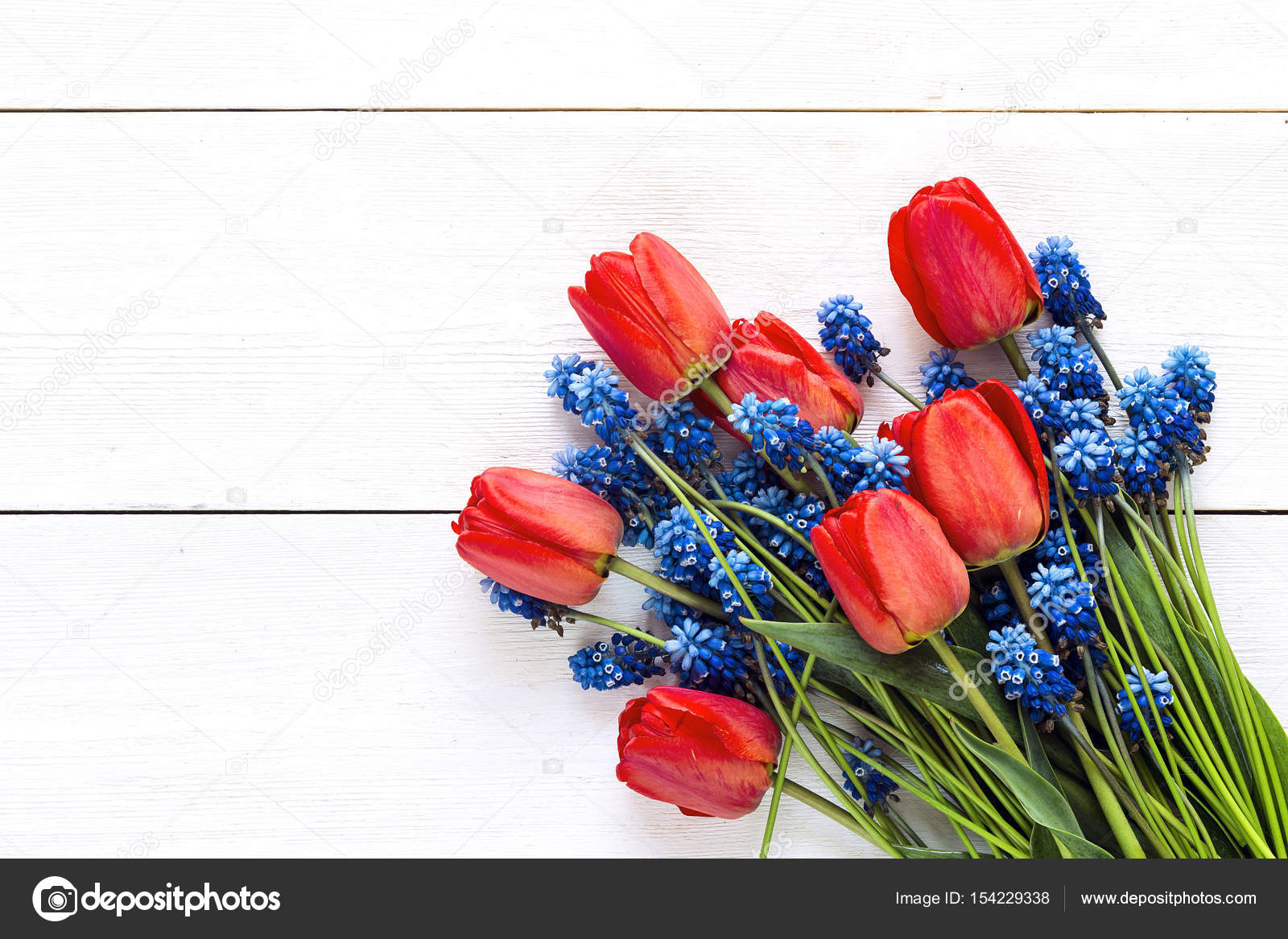 Mazzo Di Fiori Blu.Bouquet Of Red Tulips And Blue Muscaries Flowers On White Wooden