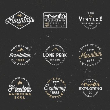 Minimal retro badges, vintage labels for branding projects