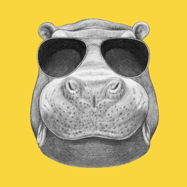 hippo with sunglasses