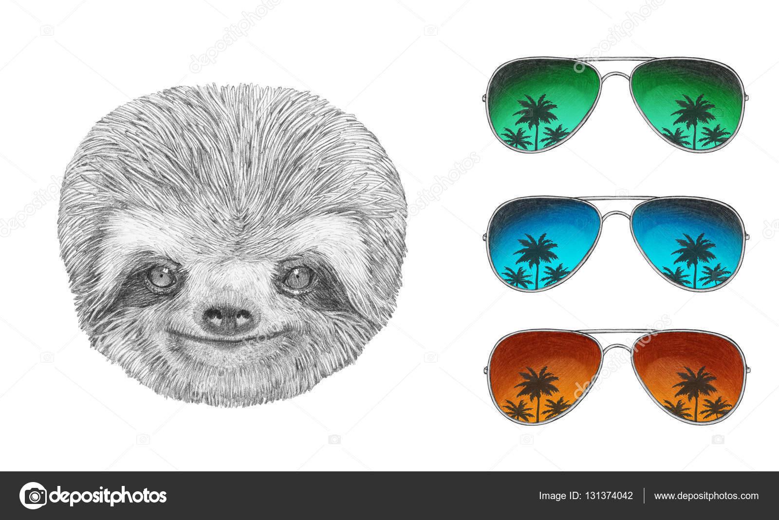 sloth with mirror sunglasses stock photo victoria novak 131374042