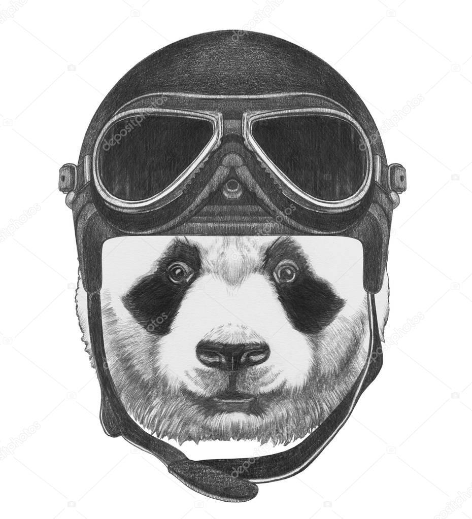 Portrait of Panda bear
