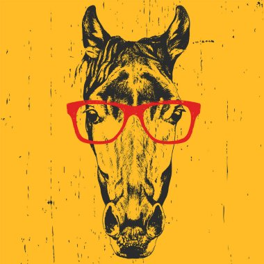portrait of horse with glasses.