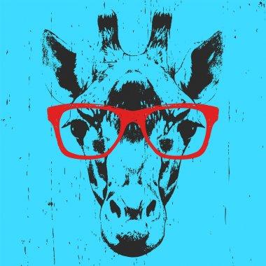 Portrait of Giraffe with glasses.