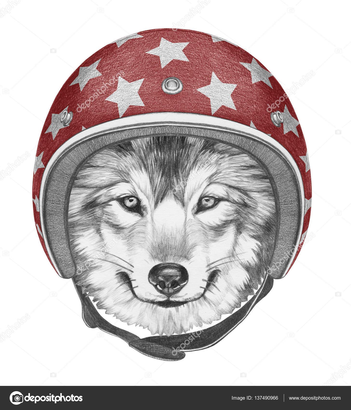 ヘルメットと狼の肖像 — ストッ...