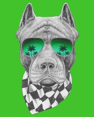 Funny sketch of pit bull portrait  in aviator sunglasses with reflection of palm trees on green