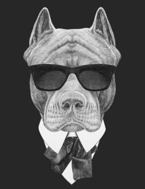 Funny sketch of pit bull portrait  in hipster sunglasses, shirt and bow tie on black