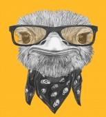 Fotografie Legrační skica portrét pštros v bederní brýle a šátek s lebkami, žlutá