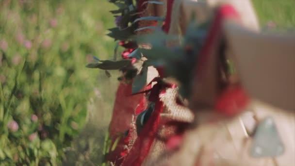 Shairs verziert mit Bändern und Blätter
