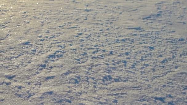 Ledová krusta ve světlé pozadí slunce