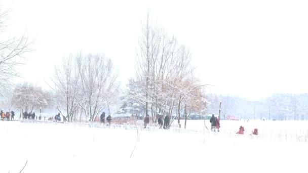těžký sníh v parku