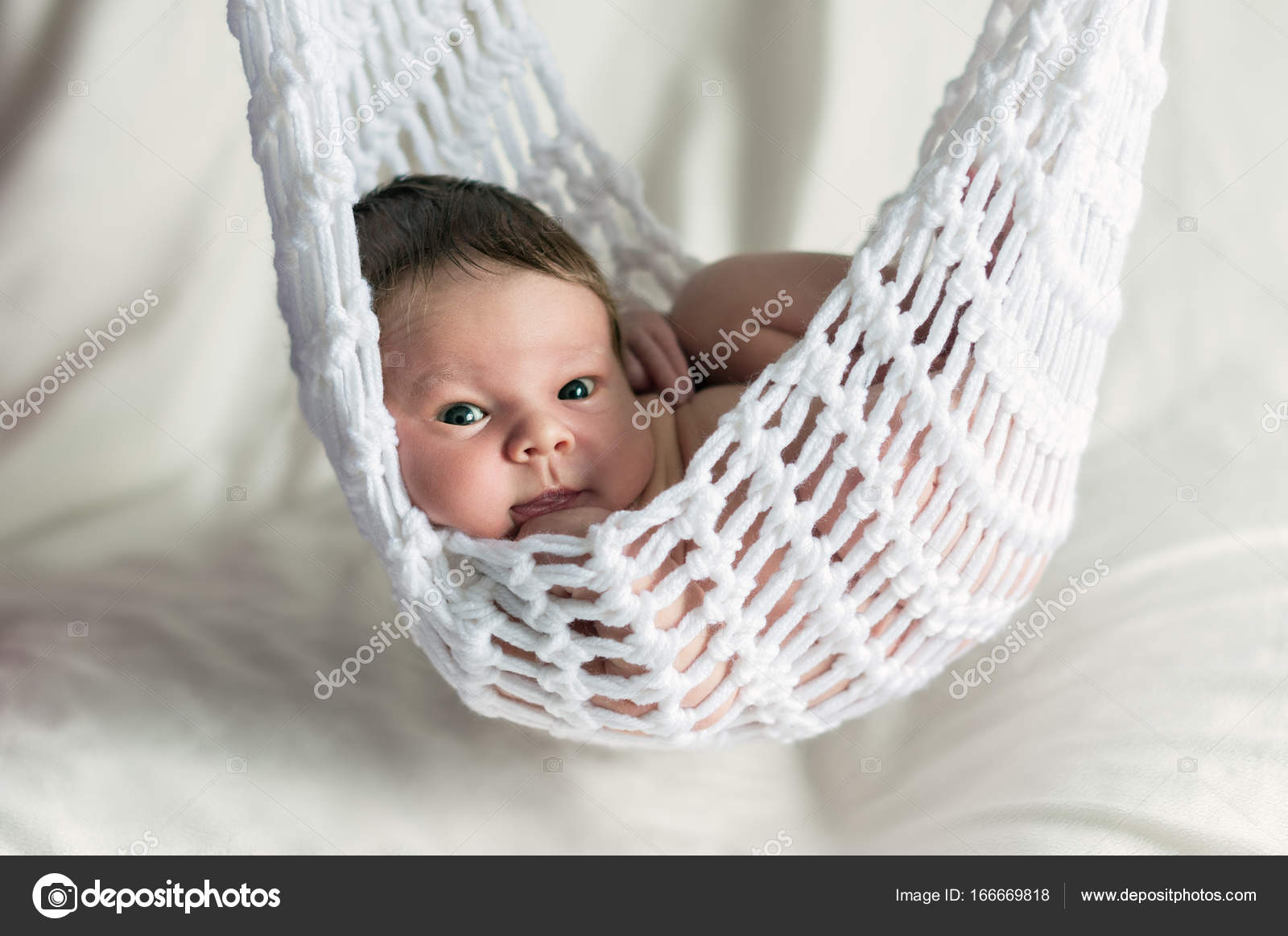 Newborn Baby Boy Wrapped Blanket Knitted Stock Photo