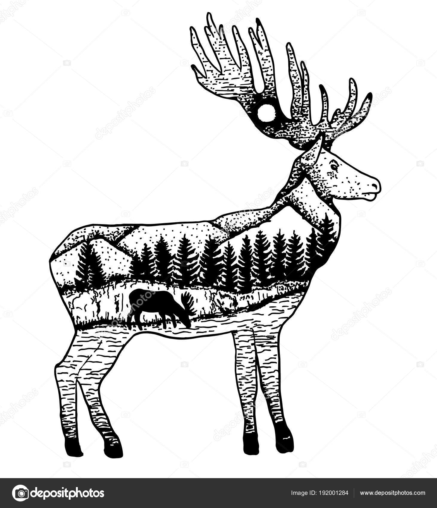 Stylized elk with nature landscape vector ink hand drawn ...