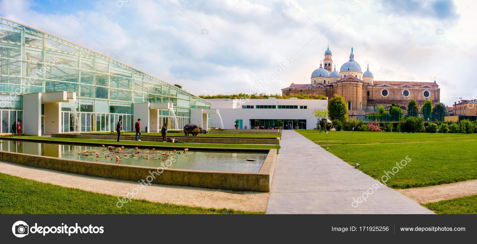Orto botanico ди Падова Ботанический сад Падуя наследия ЮНЕСКО