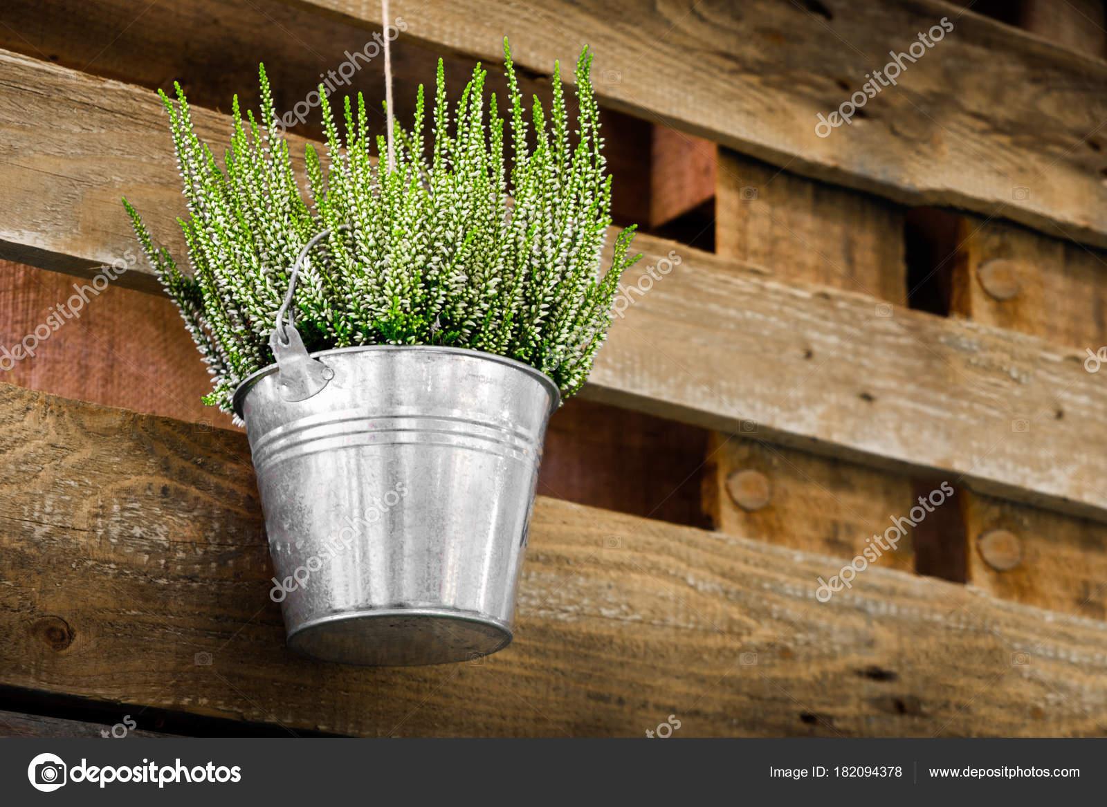 topfpflanzen aus holz hintergrund heidekraut blecheimer. Black Bedroom Furniture Sets. Home Design Ideas