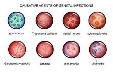 the causative agents of sexually transmitted infections