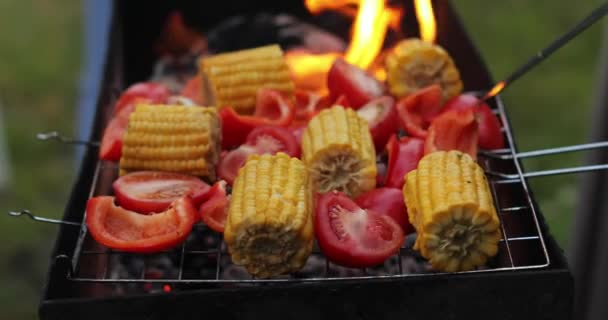 Close up on vegetable kebabs cooking on a bbq