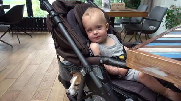 Chlapeček se psem sedící v kočárku v kavárně