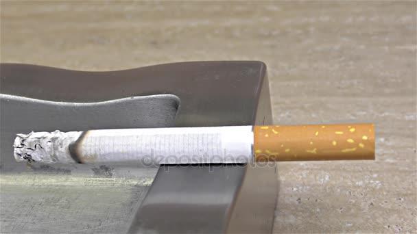 Zigarettenbrennen auf Aschenbecher - Zeitraffer, Geschwindigkeit 20x, Nahaufnahme, Detail, Makro