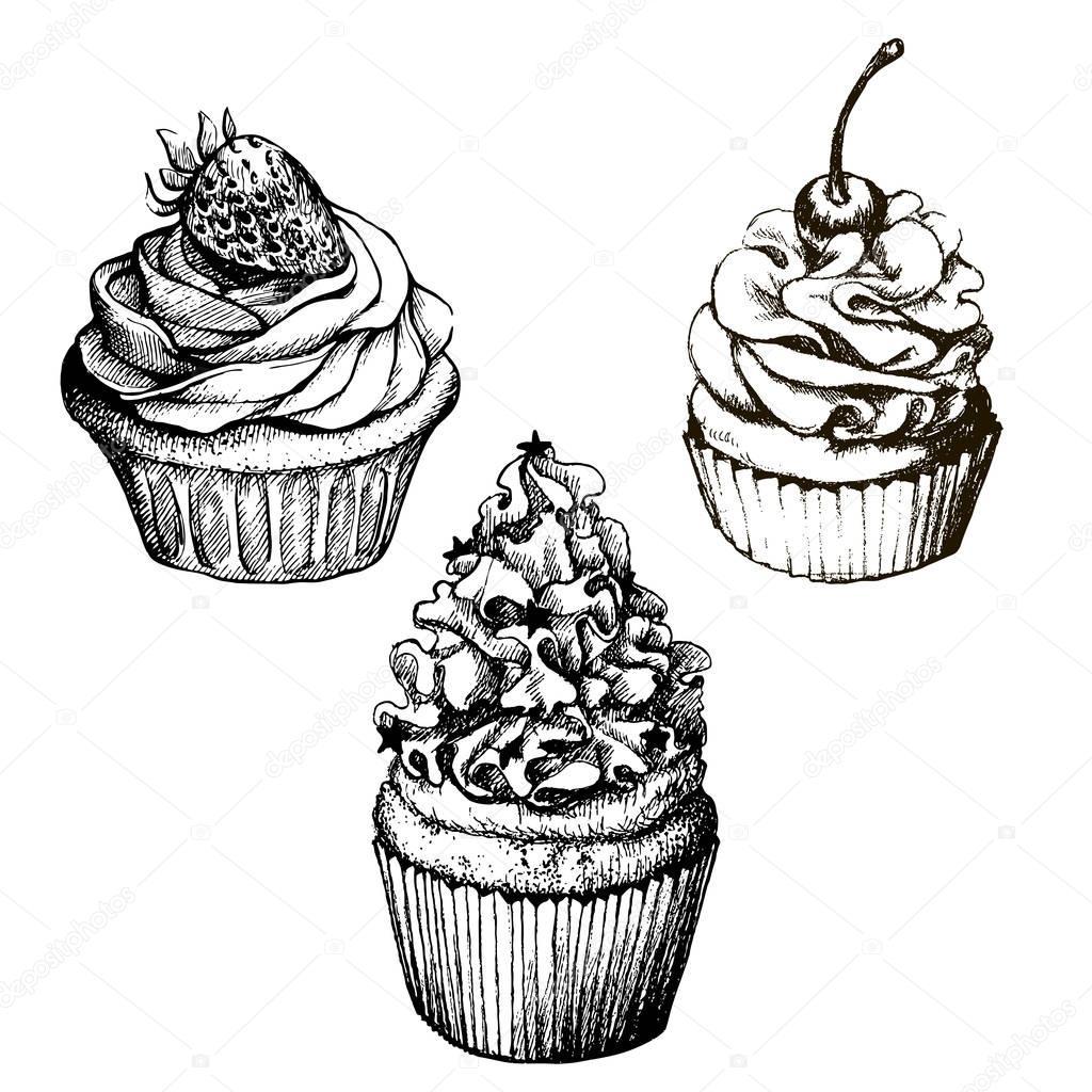モノクロのベクトルの背景手にはイチゴとチェリーの甘いカップケーキ