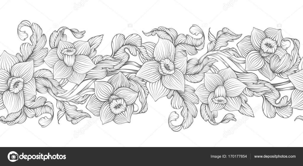 Daffodils Narcissus Dense Outline Sketch Drawing Floral Seamless Border Spring Flowers Black And White Foliage Vector Illustration By MiaMilky