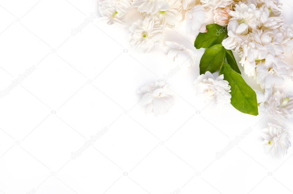Weiße Blume Hintergrund von Jasmine Natur Blumen verbreiten am ...